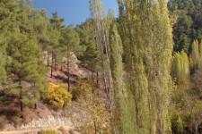 2013_zypern_142