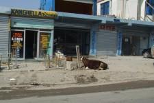 2007_balkantour_234