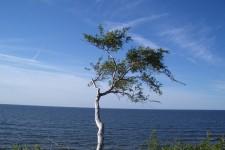 2005_baltikum_052