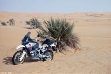 2000_libyen_098